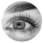 lash lift icon